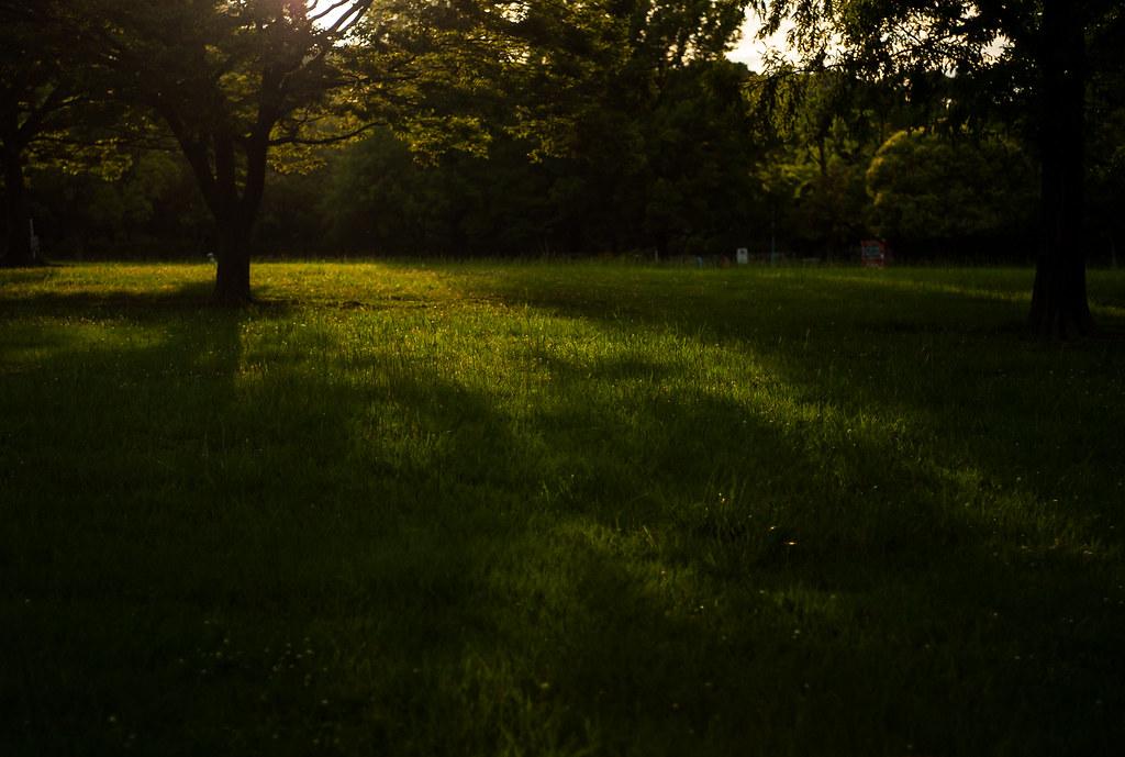 夕暮れ時の春日公園