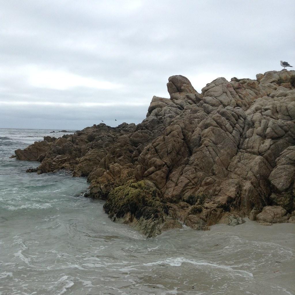 17 Mile Drive | Carmel, California | Monterey, California