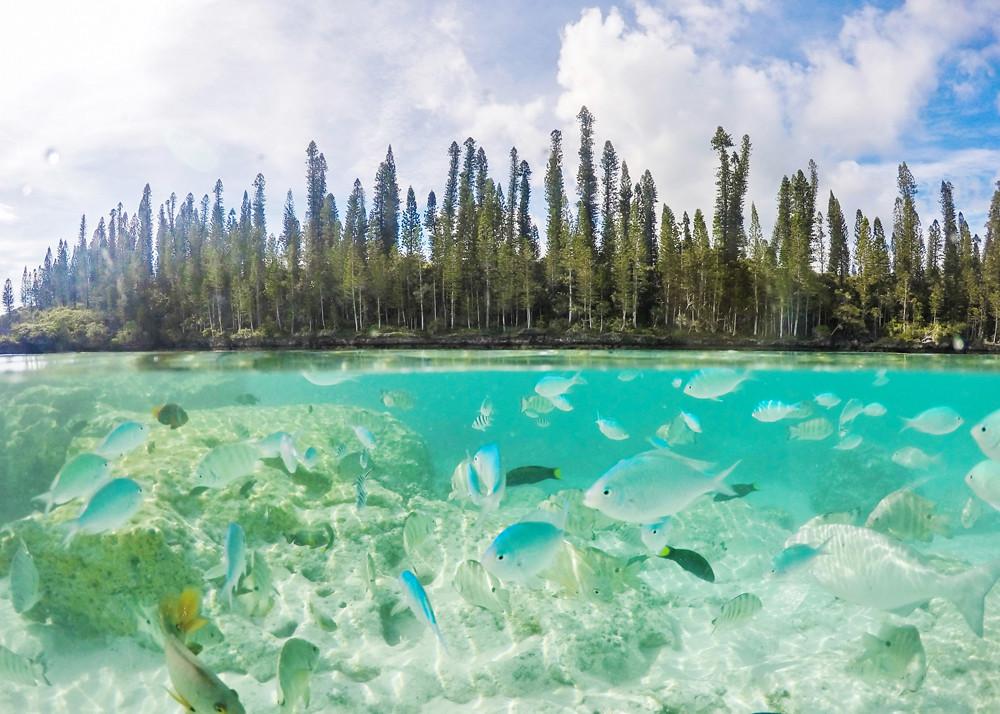 merten saastuminen