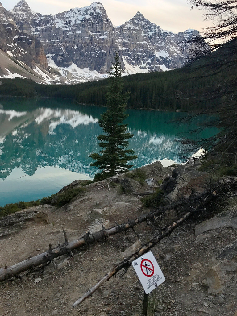 Do not walk off the path at Moraine Lake