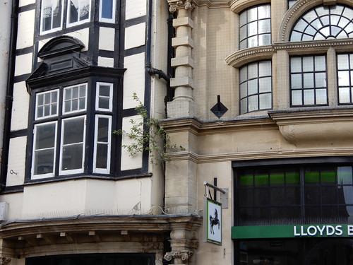Lloyds green frontage