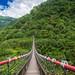 達娜伊谷福美吊橋:DSC01763
