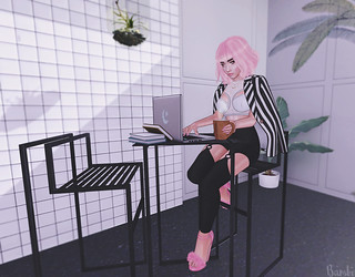 ~Pink Lady~