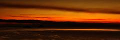Bioluminescence & Boat
