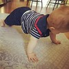 Planking like a b-o-s-s.