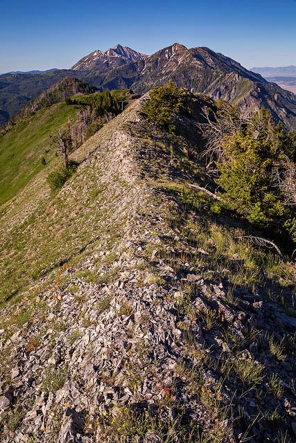 Dry Mountain Ridge
