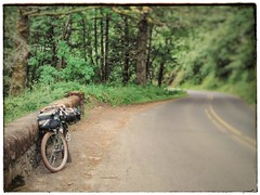 The Historic Columbia River Highway: A road worth biking. Especially on a weekday, when there's less traffic! #historiccolumbiariverhwy #columbiagorge #midweekgorgeridejune2017 #pedalpalooza #pedalpalooza2017