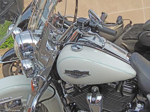 Harley Davidson a Zola Predosa