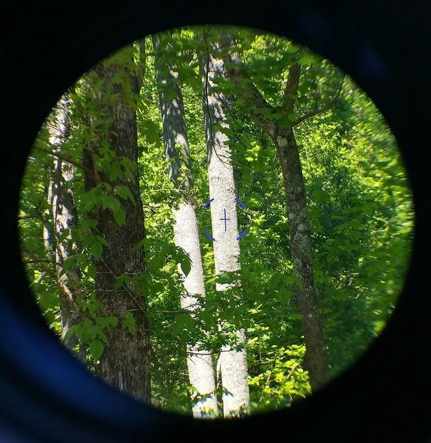 3x30 & 45 degree sights3