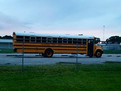 5005 - 2012 IC CE - Hillsborough County School Bus Florida