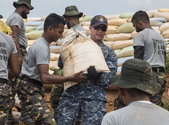 Fire Controlman 2nd Class Jason McEntire works with Sri Lankan Marines to repair levees during humanitarian assistance operations, June 12. (U.S. Navy/MC2 Joshua Fulton)