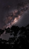 Milky Way - Lake Leschenaultia, Western Australia