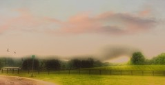 Fences and Fog