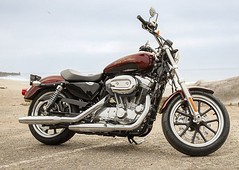 Harley-Davidson XL 883 L Superlow 2011 - 16