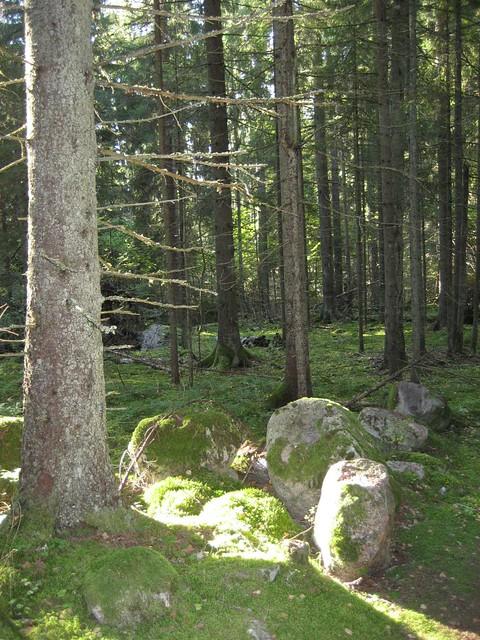 karkalin luonnonpuisto 2_zpsmbdowsla