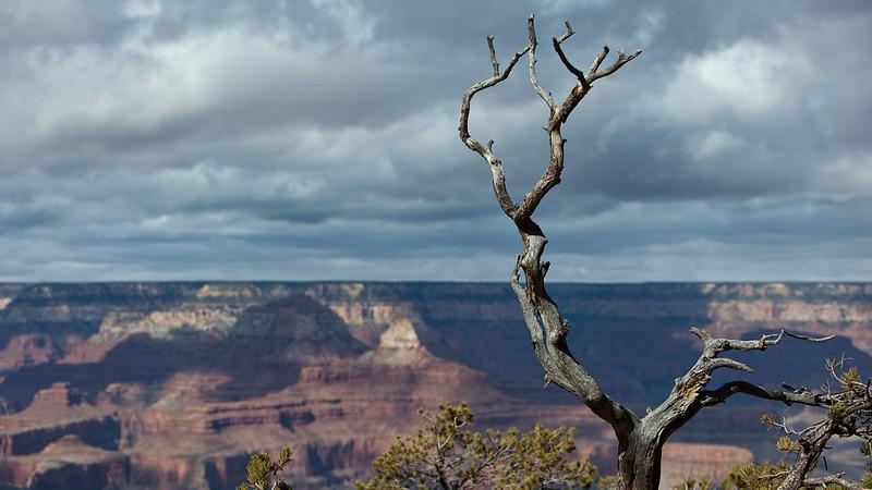 canyon_290