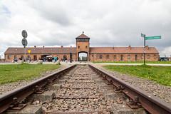 Birkenau camp
