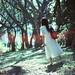 淡江,我的青春回憶