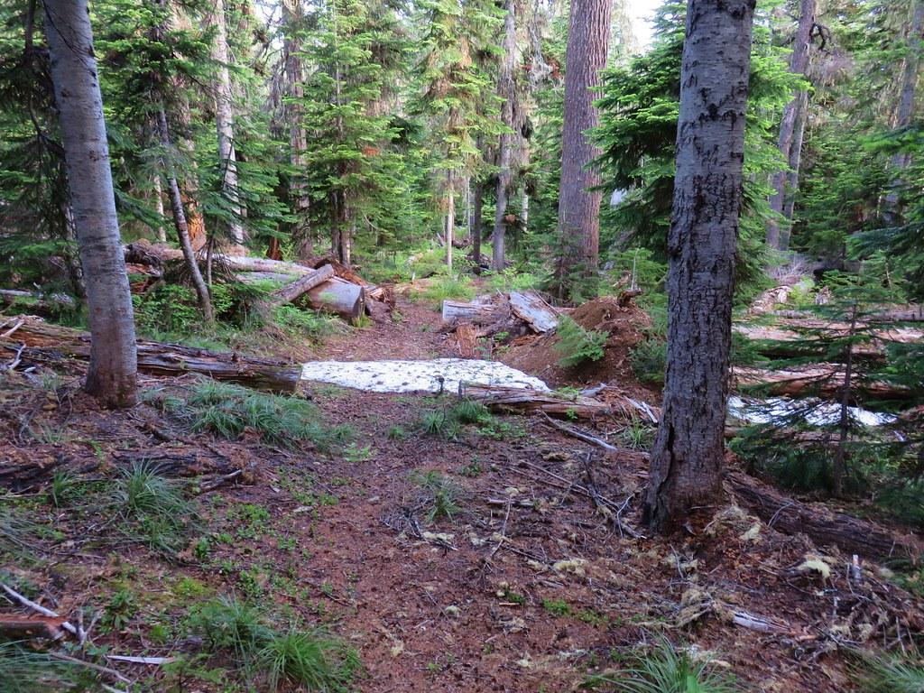 Snow on the Scar Mountain Trail