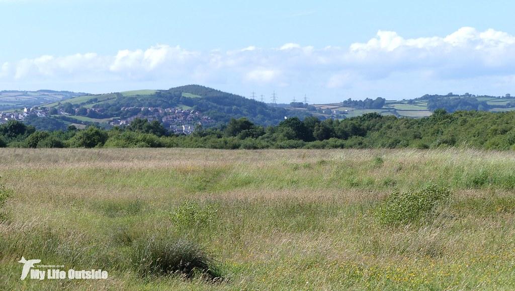 P1090476 - Bryn Lliw Grasslands