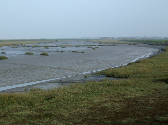 The coast near Allhallows-on-Sea