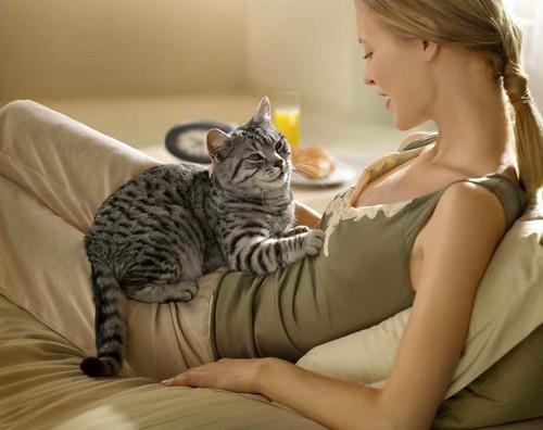 Кішки і здоров'я