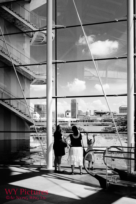 Singapore 2017: Art Science Museum Window Scene