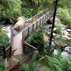 #bridge #footbridge #trail #hiking #river #boulder #PNW #statepark