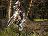 miniature KTM FREERIDE 250 R 2014 - 8