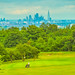 Epsom Downs Golf