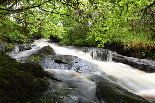 Rapid river.