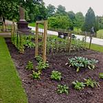 Avenham Park wartime garden