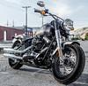 Harley-Davidson 1690 SOFTAIL SLIM FLS 2017 - 7