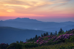 Grandfather Mountain...from Grassy Ridge, Roan Mountain North Carolina