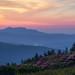 Grandfather Mountain...from Grassy Ridge, Roan Mountain North Carolina by jason_frye