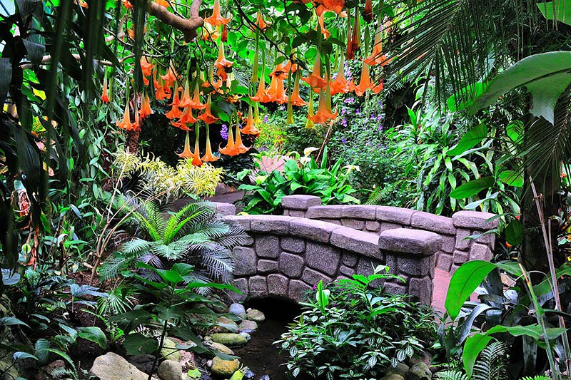 Victoria Butterfly Gardens Vancouver Island News Events
