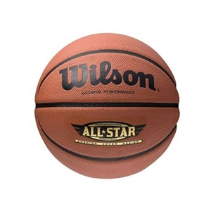 Picture of Wilson Basketball