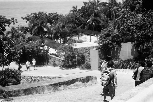 Downhill Towards The Shore