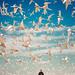 Na estrada de fusca até o fim do muno by Raphael Pizzino