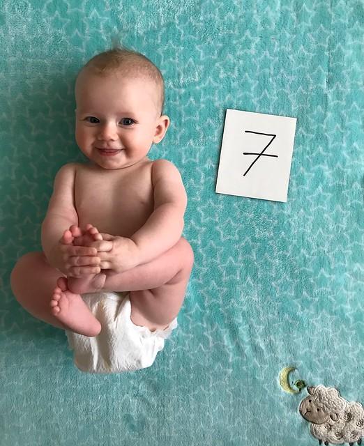 Jadzia 7 months old