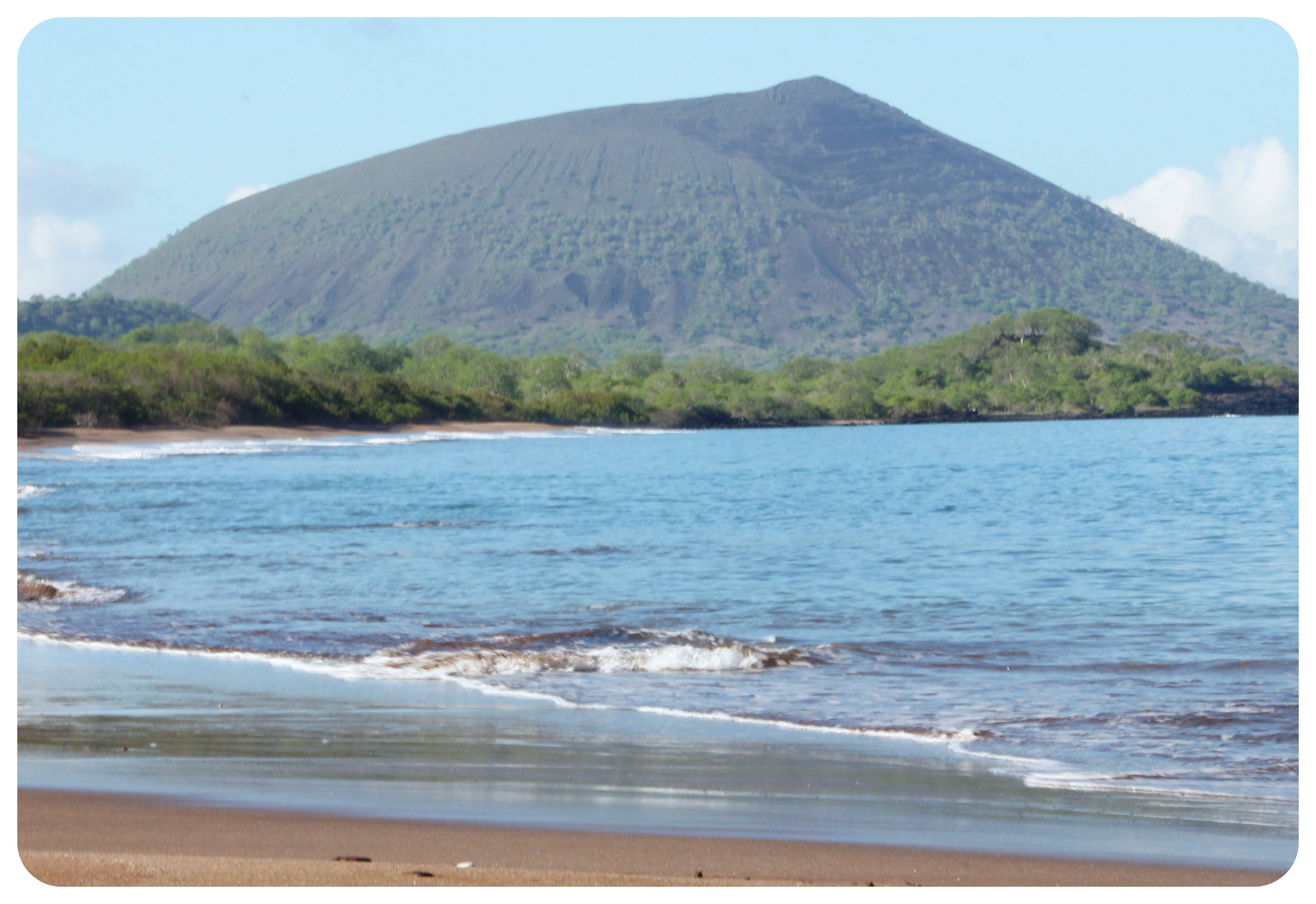 espumilla beach galapagos