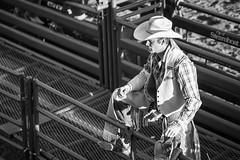 20170622_F0001: Cowboy in preparation