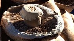 Portabella Mushroom at Farmer's Market Waukesha WI by sheldn