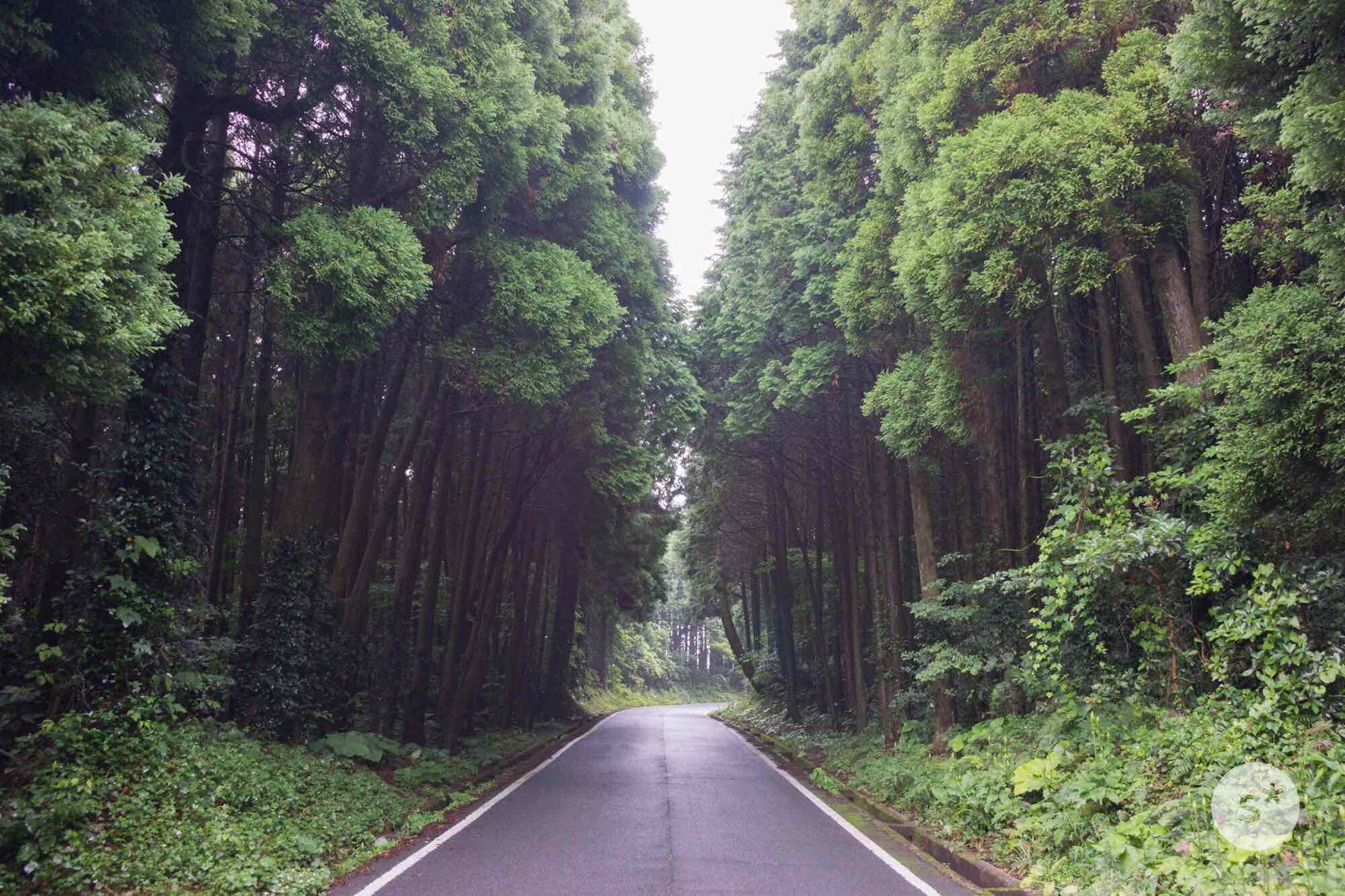 onidake-road