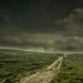 Cloud Walker by Mr Bultitude