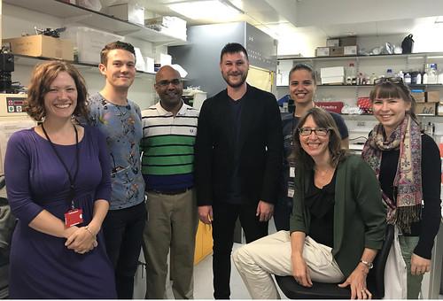 Rohn Lab July 2017
