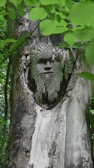 Green Man carving by trackbed, Bollington    (Marple - Macclesfield  old railway)