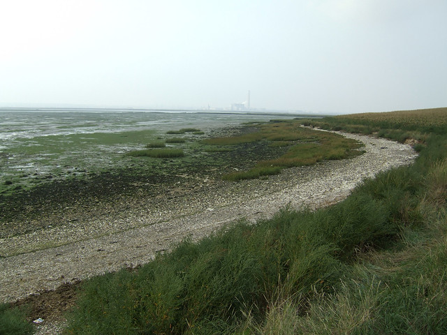 Rainham Creek