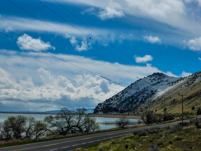 Klamath Basin National Wildlife, Panasonic DMC-TS6