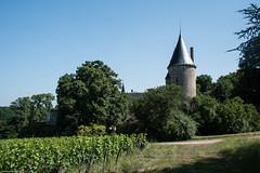 Château de Tracy - Photo of Pouilly-sur-Loire